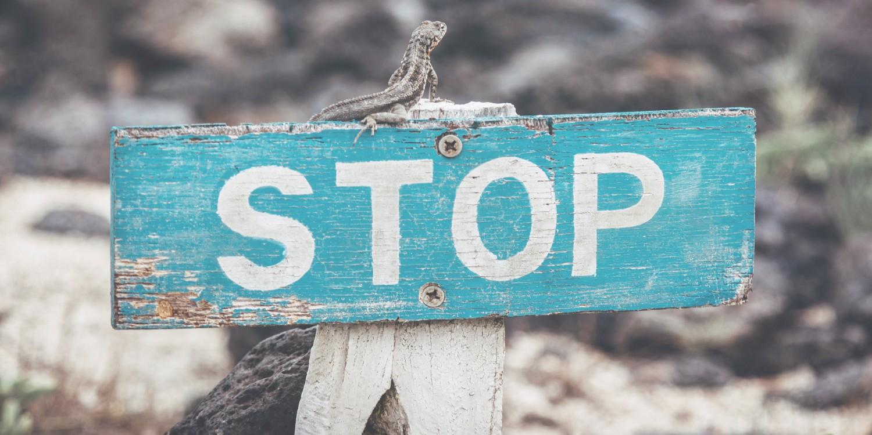 【画像で解説】WordPress自動更新の停止設定|プラグインでは管理できないの?
