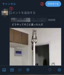 10 256x300 - 【画像で丁寧に解説】Twitterで動画だけ引用リツイートする方法