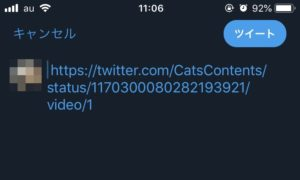 8 300x180 - 【画像で丁寧に解説】Twitterで動画だけ引用リツイートする方法